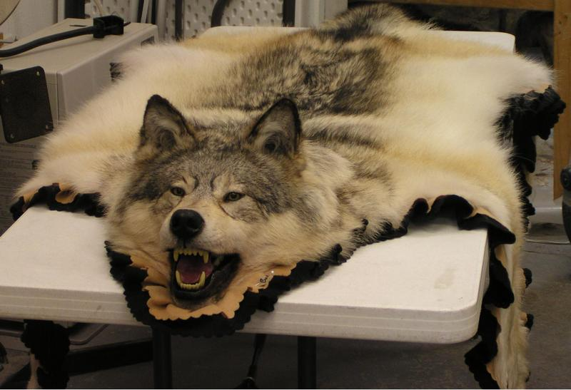Wolf Rug Home Decor